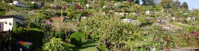 Raichberg Kleingartenanlage und Gaststätte