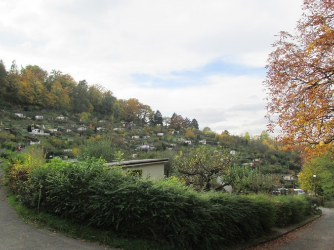 Raichberg im Herbst II
