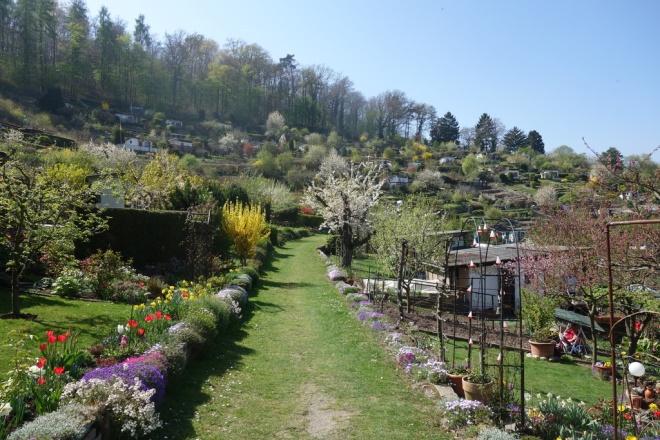 tor zur Gartenanlage