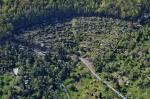 Luftbild unserer Gartenanlage in Stuttgart-Ost